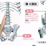 腰痛の真の原因