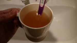 乳酸菌歯磨き