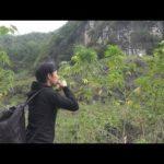 【動画】世界5大長寿村の1つ巴馬に突撃